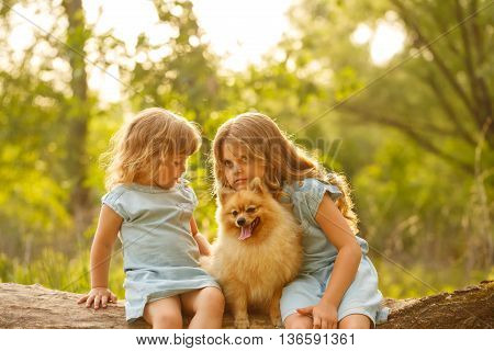 Little girl hugging a pet. Sisters and a dog sitting on a fallen tree. Pedigree dogs Spitz.