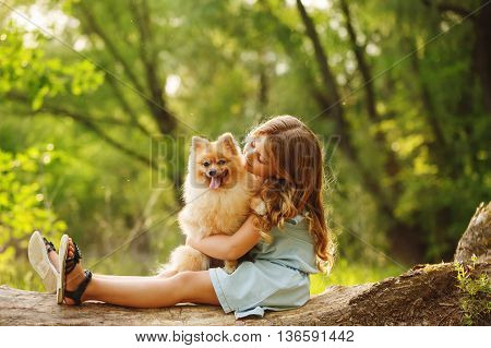 poster of Little girl hugging a pet. Girl sitting on a fallen tree and hugging the dog. Pedigree dogs Spitz.