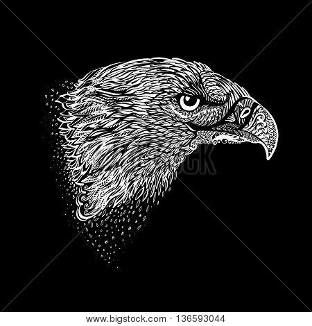 Stylized Head of Eagle. Hand Drawn Black and White Doodle Illustration
