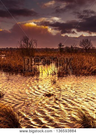 Storm brewing across marshes and lake with stormy clouds at sunrise