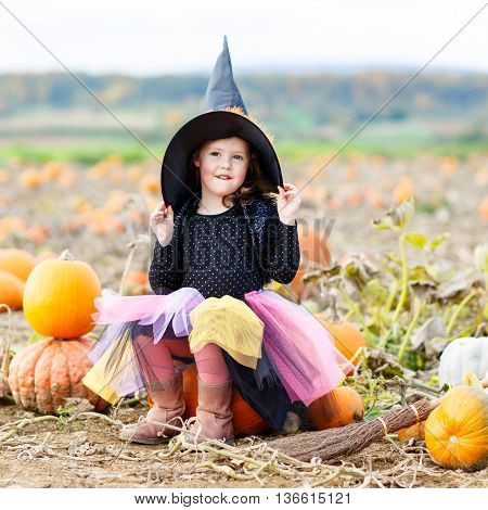 Lovely little kid girl wearing halloween witch costume having fun on a pumpkin patch. Traditional family festival with children.