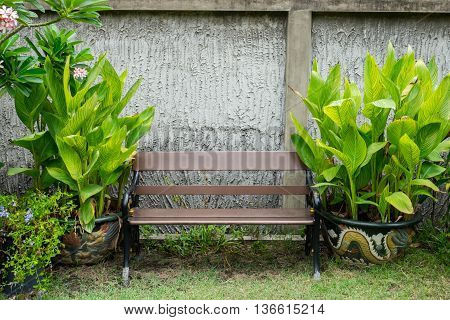 Green bench in the park wih plants in dragon flowerpot on left and right