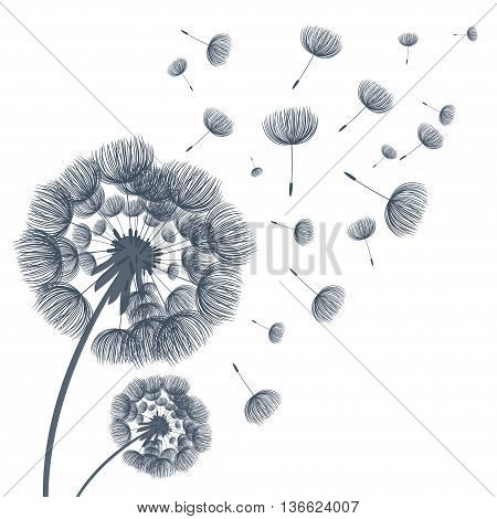 Abstract Fluffy Dandelion Flower. Vector Illustration