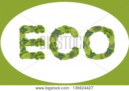 Green eco, isolated on a white background. Logo, icon.