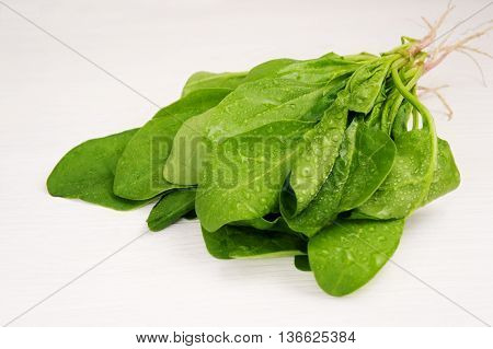 Green spinach on a white background. A bunch of spinach.
