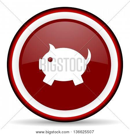piggy bank round glossy icon, modern design web element