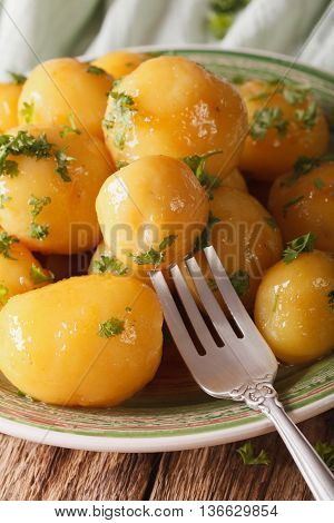 Caramelized New Potatoes With Herbs Close-up On A Plate. Vertical