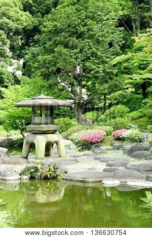 Japanese Outdoor Stone Lantern, Flower Plants In Zen Garden