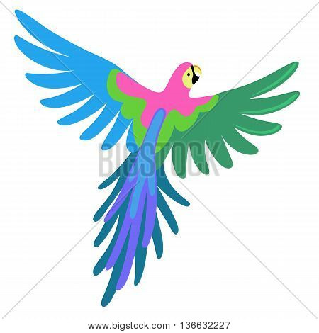 Macaw parrot vector illustration isolated on white background