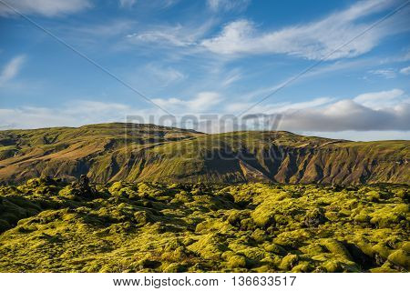 Eldhraun lava field (moss cover on lava rock) and mountain beautiful volcanic landscape of Iceland