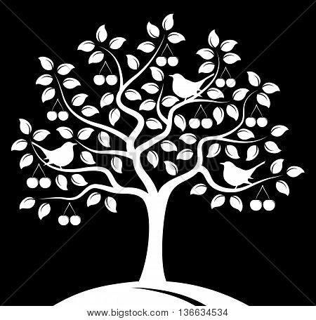 vector cherry tree and birds isolated on black background