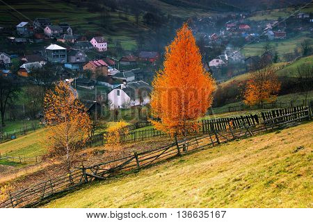 beautiful autumn Carpathian landscape in Europe, Ukraine