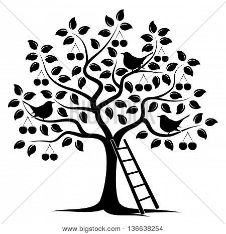 vector cherry tree with birds and ladder isolated on white background