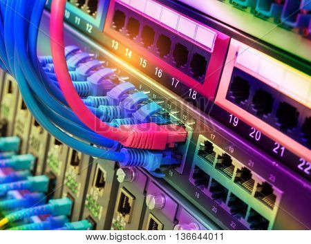network cables connected in network switches
