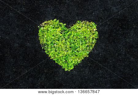 Go green. A green heart on black soil background. Love nature. Protect nature. Sustainable development. CSR. Corporate social responsibility