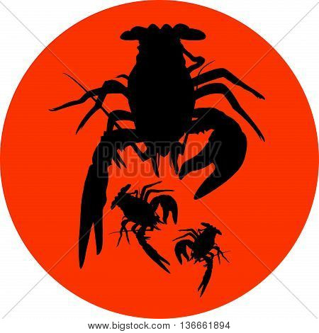 crawfish label, crawfish silhouette, crayfish icon, lobster sign, crawfish symbol, lobster . Vector illustration .