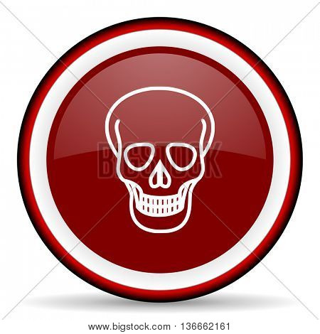 skull round glossy icon, modern design web element