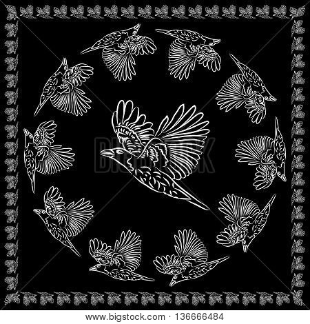 World crows. Crows in different framework round square.