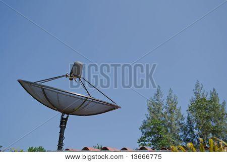 Dish Aerial
