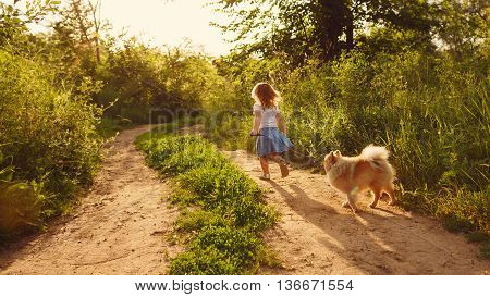 Little girl and pets. Girl and dog walking on the road in the city park. Pedigree dogs Spitz.