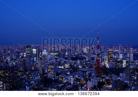 Nighttime view of Tokyo Tower in Tokyo Japan