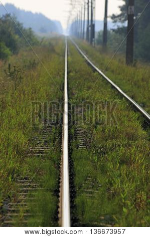 Grassy rails with limited depth of field