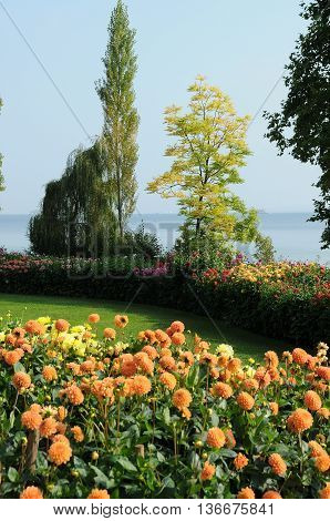 the wonderfull lake of constance in germany