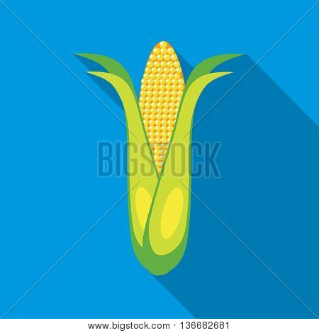 Corncob icon in flat style on a sky blue background