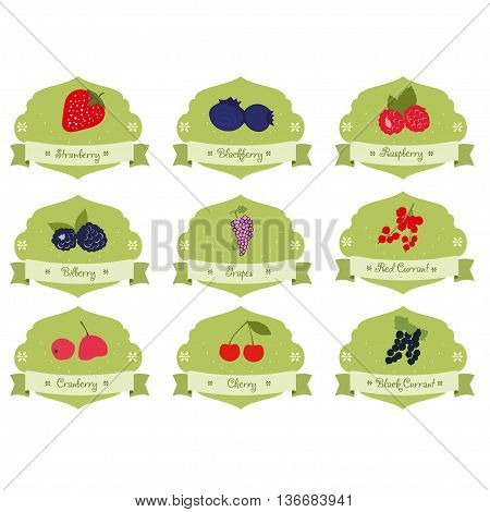 Vintage collection berries badge, sticker and logo design in vector. Set of berries labels collection tag in vintage style.