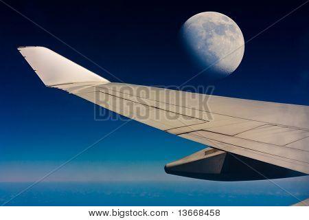 Sky Wing Flight
