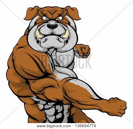 Bulldog Attacking