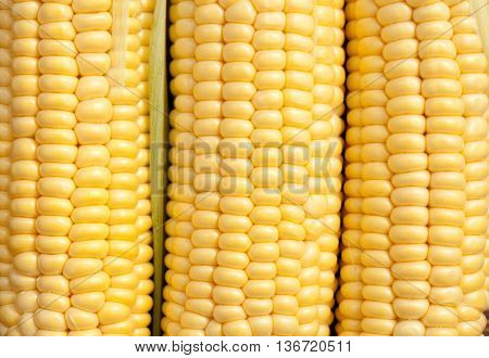 cooking for young corn recipes and corn on the cob