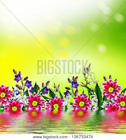 floral background of flowers bluebells. spring. nature
