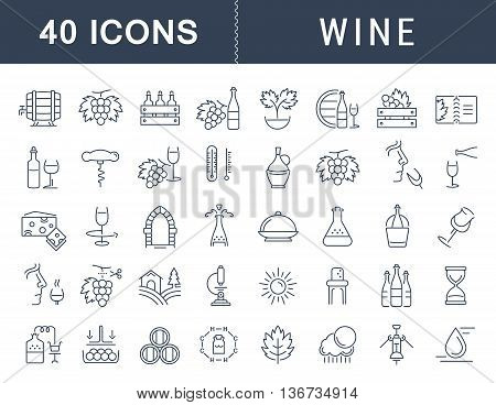 Set vector line icons in flat design wine making grape cultivation tasting storage and sale of wine with elements for mobile concepts and web apps. Collection modern infographic logo and pictogram.