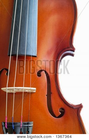 Musical Instruments: Violin Closeup Showing The Bridge (16)