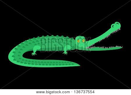 Crocodile Isolated. Good Caiman. Wild Animal. Green Reptile With Big Teeth. Alligator Isolated. Larg