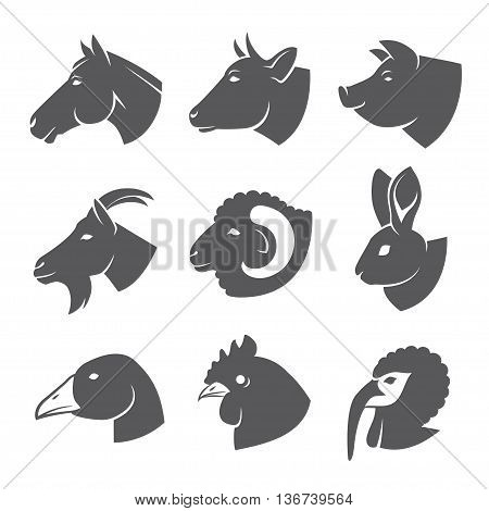 Farm animals and birds heads icon set