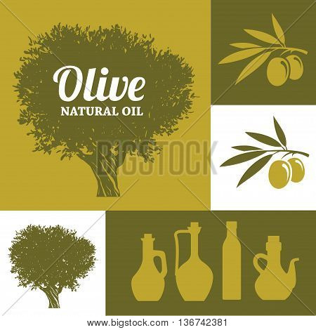 Set of olive oil signs and symbols olive tree branch and bottles