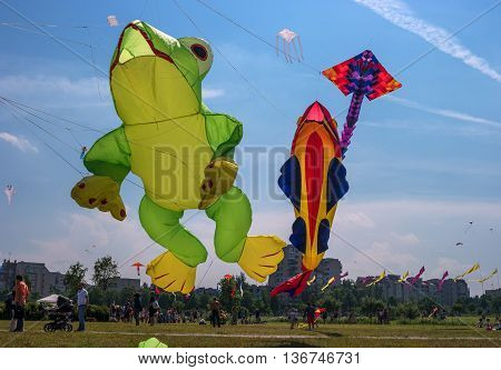 Saint-Petersburg Russia - June 26 2016: Kite Festival in the town of Pushkin. Take off the snake in the form of frogs and fish.