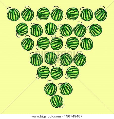 The triangle of watermelon. Background of whole watermelons