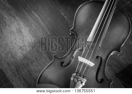 Closeup Violin on wood background Black and white