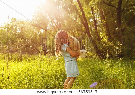 Little Girl and Spitz. Girl hugging a pet standing in a meadow. The setting sun.