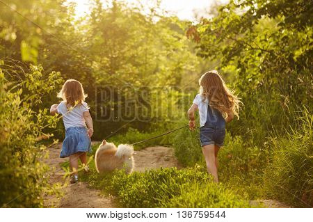 Little sisters and pet. Girls and dog walking along the road in the city park. Pedigree dogs Spitz. Go away.