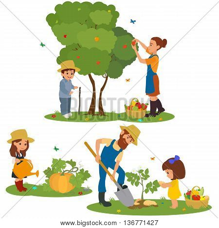 people harvest fruits and vegetables. family farm harvests and caring for plants. vector