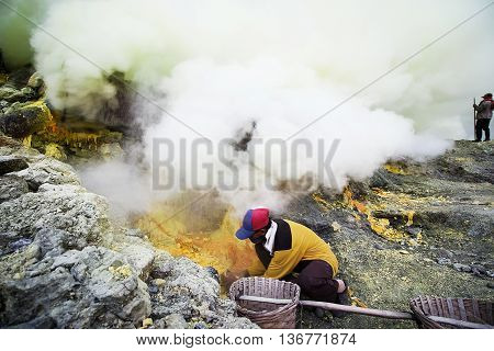 The workers were carrying sulfur ore in Kawah Ijen Vacano. The Ijen volcano complex is a group of stratovolcanoes in the Banyuwangi Regency of East Java Indonesia.
