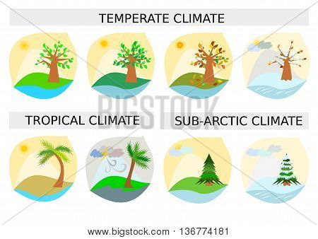 8 different weather type illustrations for temperate, tropical and sub-arctic climates