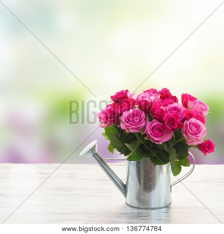 bouquet of pink and magenta fresh roses in watering can on table in garden