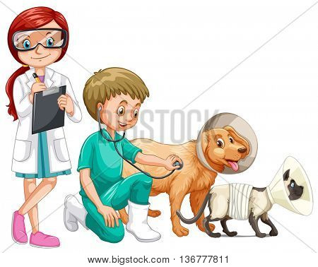 Two vets and animals illustration