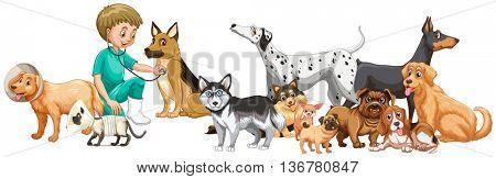 Vet examining many dogs illustration