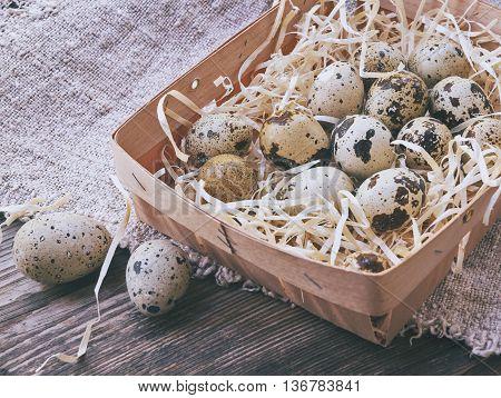 Quail Eggs. The Bundle Of Straw